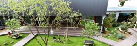 日本DS幼儿园赏析